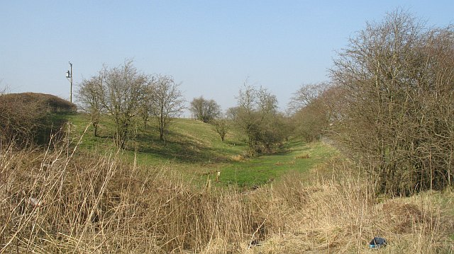 Scrubland, between Wilson's Road and Linrigg Road