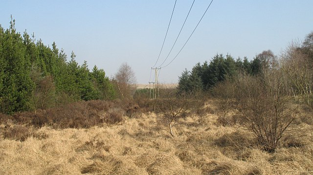 Powerlines, Goodockhill
