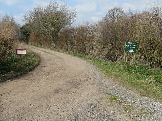 Farm track to Great Betley Farm