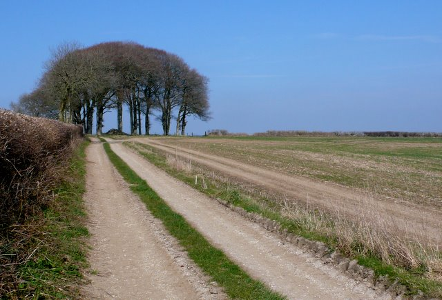 Track from Southcombe Farm