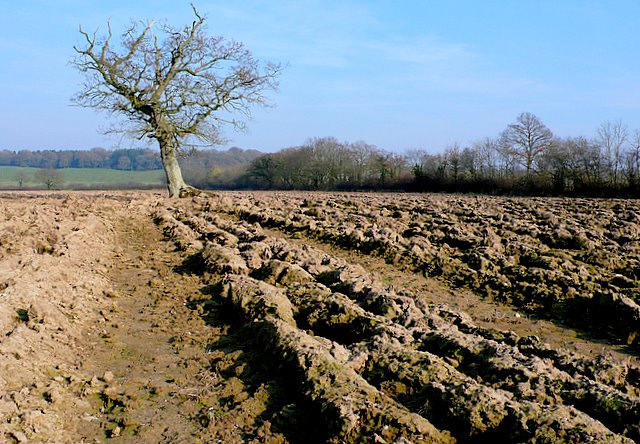 Ploughed field near Leigh