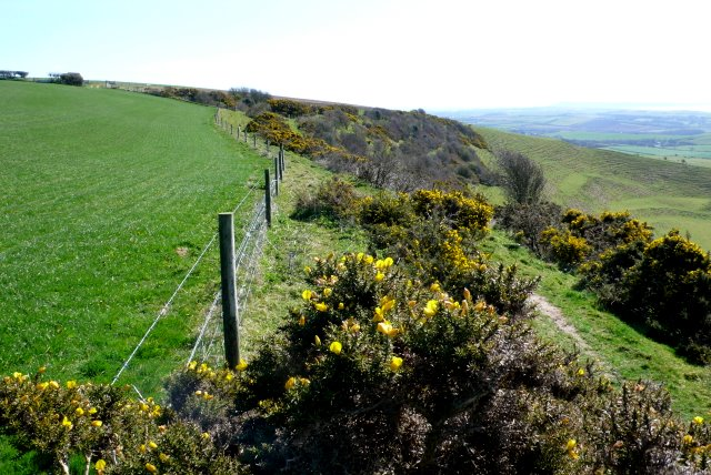 SW Coast Path Near Portesham