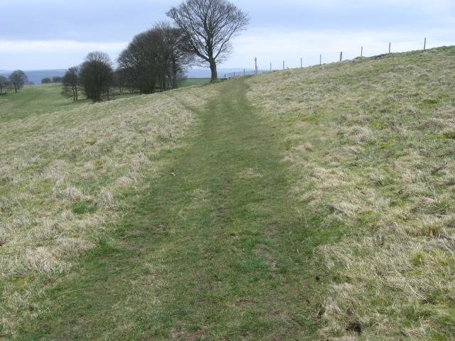 Footpath towards Over Haddon