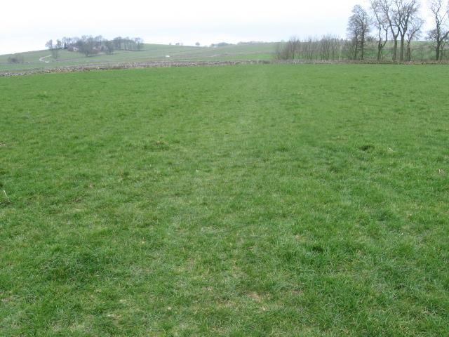 Footpath near Melbourne Farm