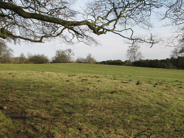 (The site of) Milecastle 25 (Codlawhill)