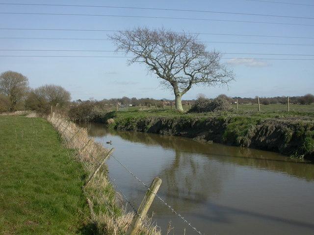 Burton, pond