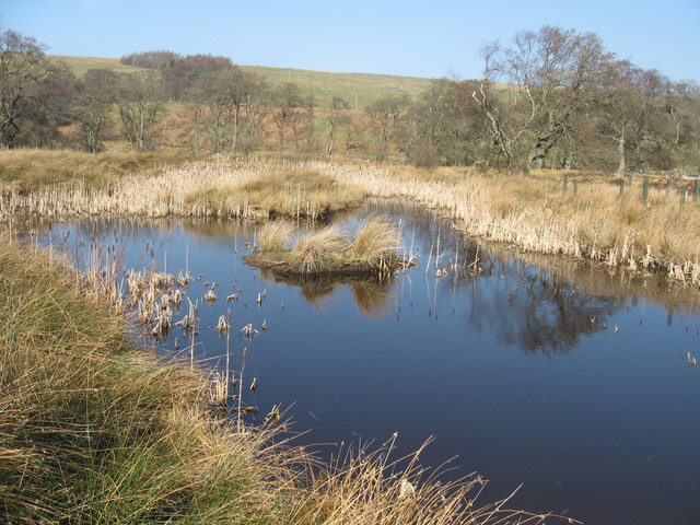 Small lake near Grasslees Burn