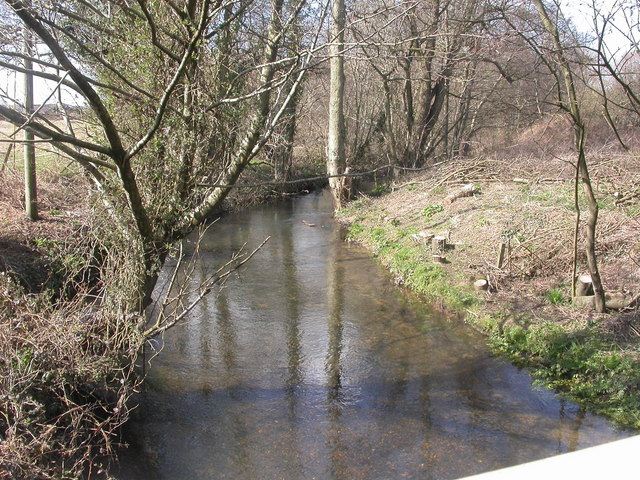 Verwood, River Crane upstream