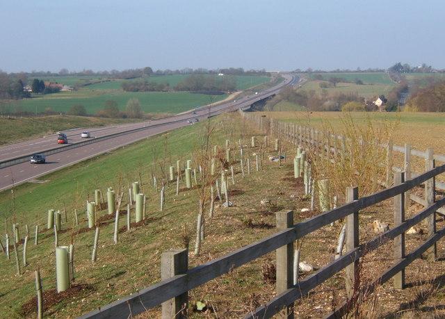A120 embankment near Stebbingford
