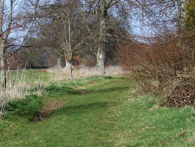 Footpath to Babington