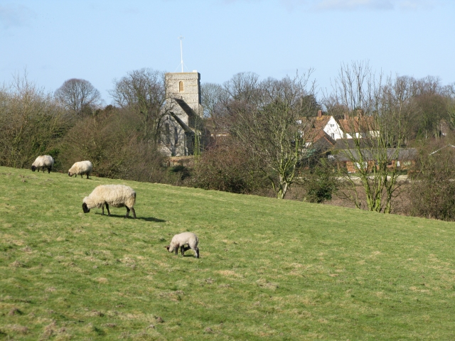 The church at Eastry from near Hay Hill