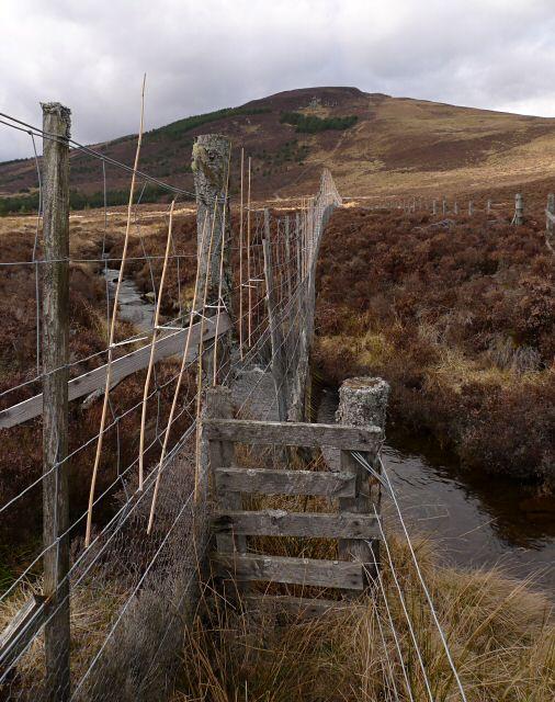 A deer fence crosses the Back Burn