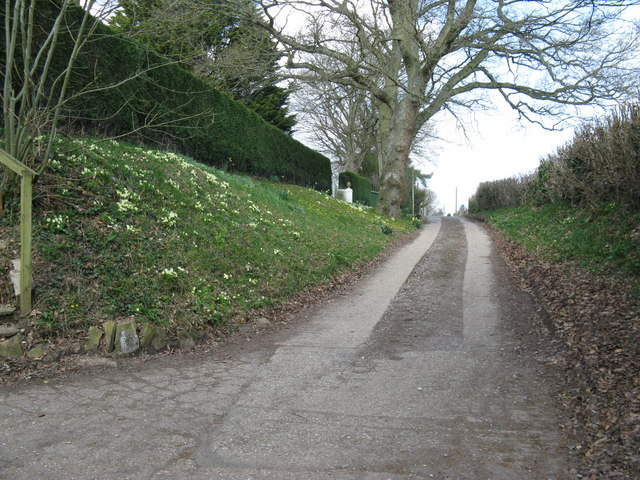 Country lane north to West End part of Henfield
