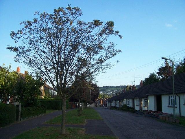 Tiverton : Sycamore Road