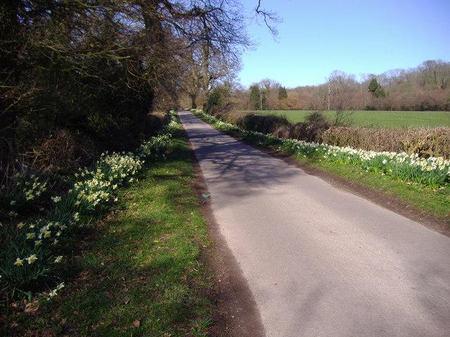 Honing Long Lane