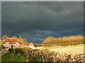 SU2469 : Dark skies over South Side Cottage, Axford : Week 13