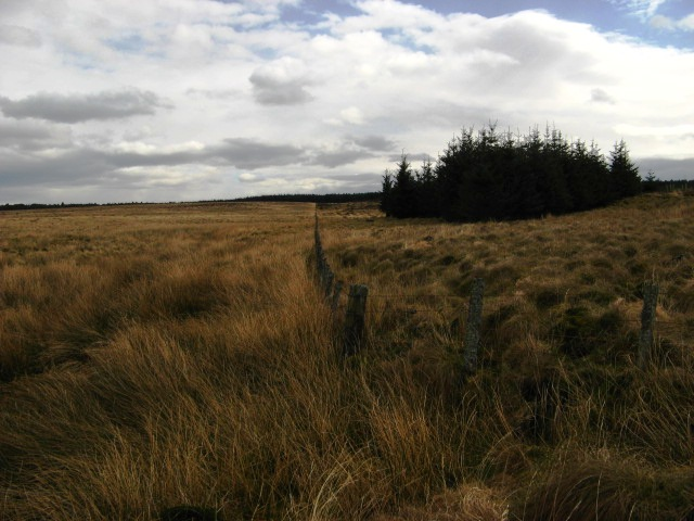 Corner post on Moorland