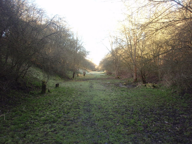 Toft Tunnel Nature Reserve