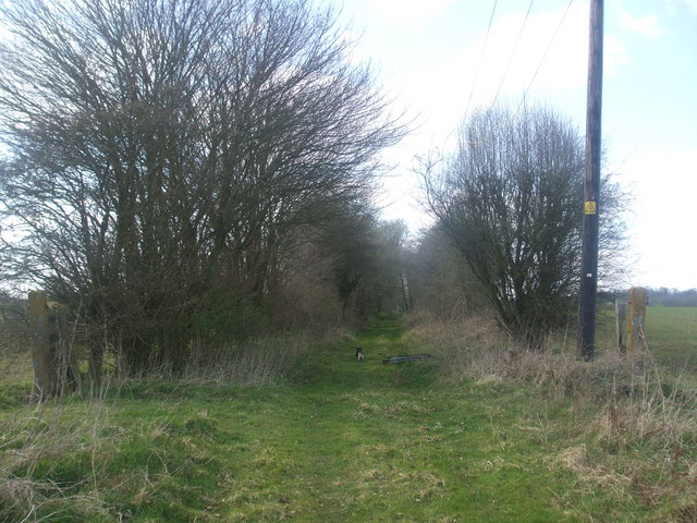 Trackbed looking towards Pulham St Mary