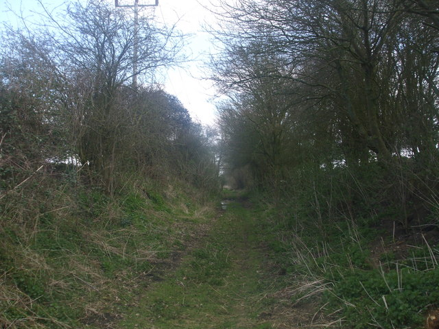 Trackbed looking towards Harleston