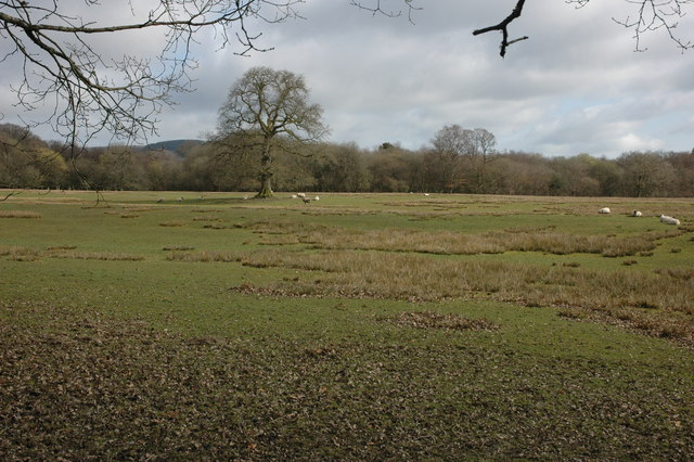Farmland near Cynghordy