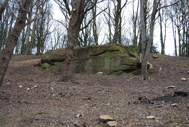 An outcrop of Tunbridge Wells Sandstone near the Happy Valley Rocks