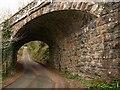 SX7882 : Railway bridge, Wray Brook valley : Week 12