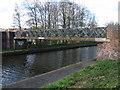 SO9592 : Tipton - Wood Street Footbridge by Dave Bevis