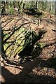 SW7343 : Williams Shaft, Unity Wood by John Gibson