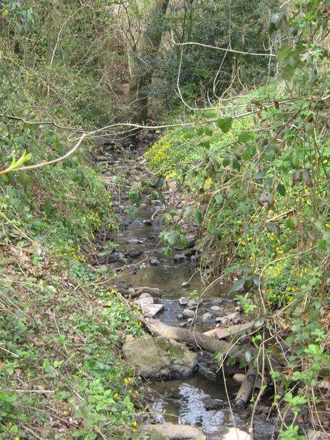 The Callow Brook, Off Rea Avenue, Rubery.