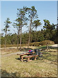 S9618 : Picnic site on Forth Mountain by David Hawgood