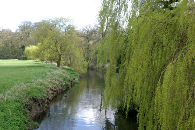 The river Sowe south of Stoneleigh