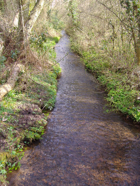 Fox's Beck, Southrepps Common