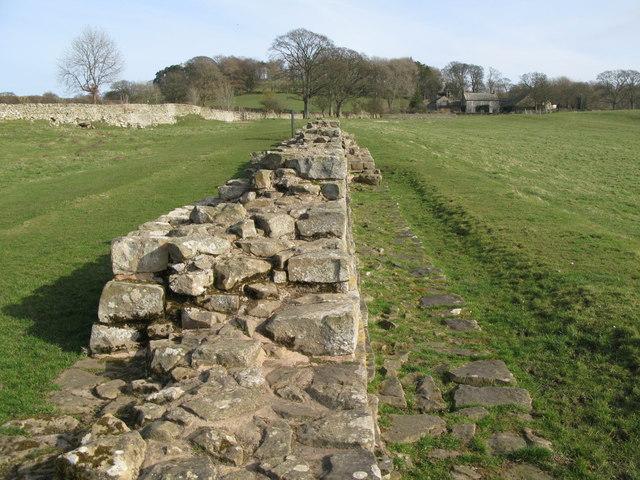 Planetrees Roman Wall