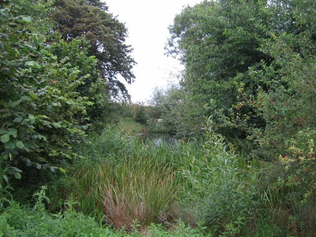 Pond near Upper South Farm 2
