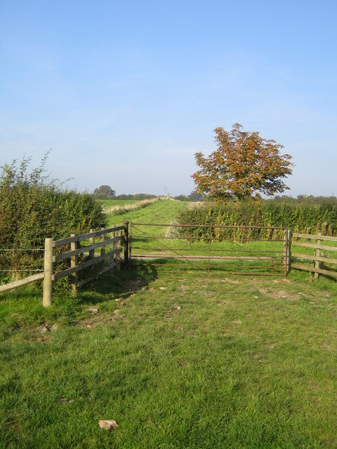 Bridleway near Lower South Farm 1