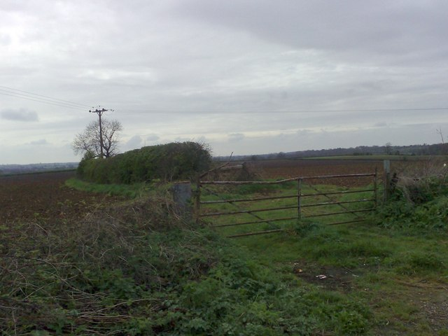 Gate to Two Fields