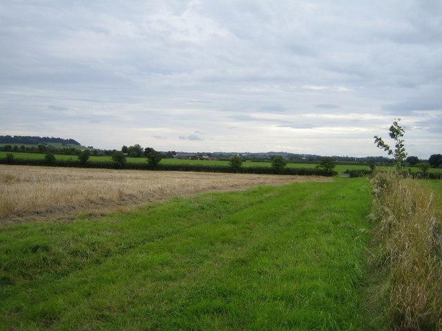 Bridleway near Lower South Farm 3