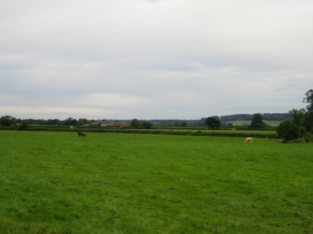 Fields near Doddershall House