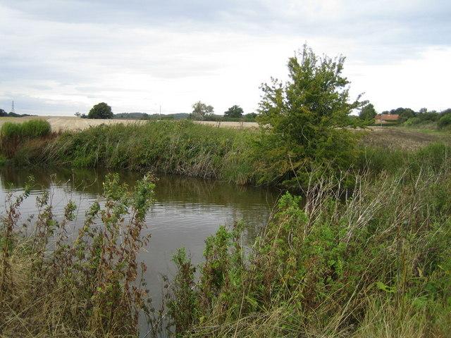 Pond near Railway Cottage