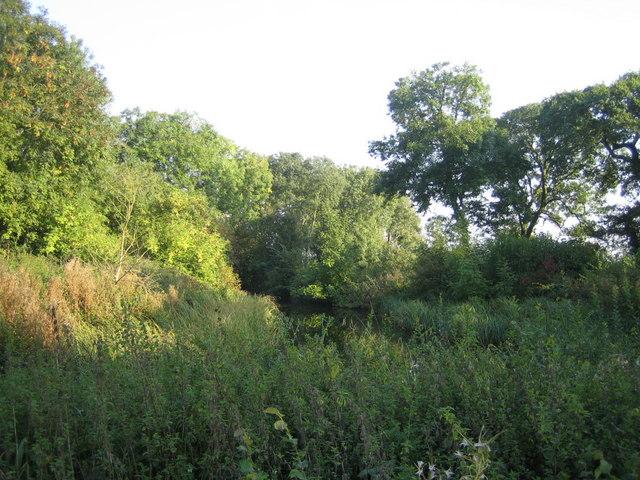 Pond near Doddershall House