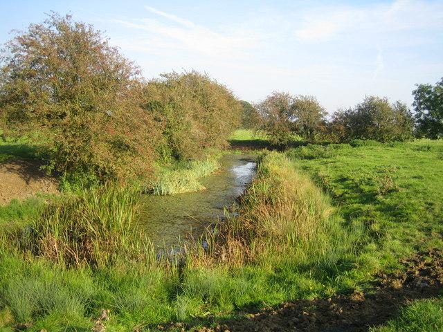 Moat near Doddershall House 1
