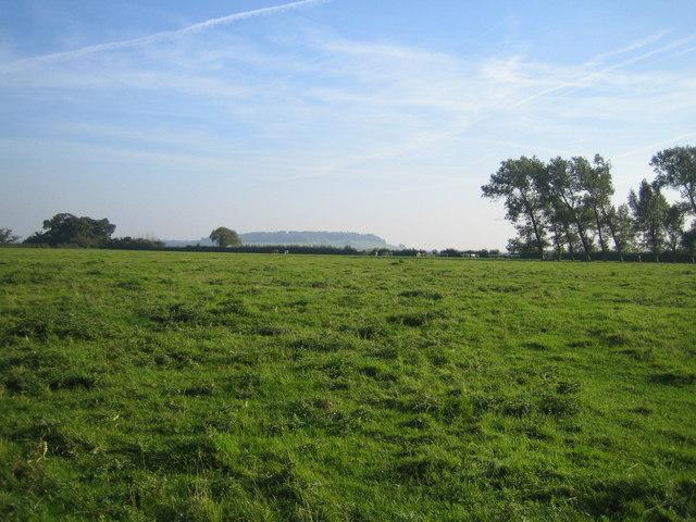 Farmland near Doddershall House 2