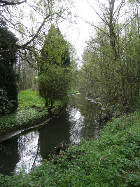 The River Blackwater near North Camp Station
