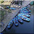 SP2864 : Boats, River Avon, Warwick : Week 15 winner
