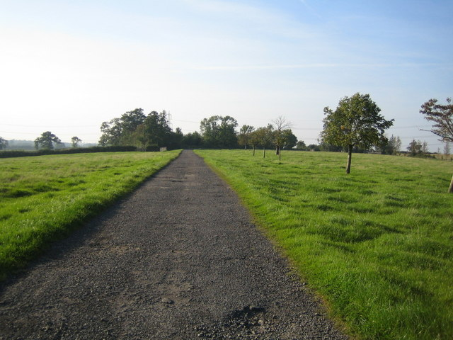 Track near Doddershall House 1