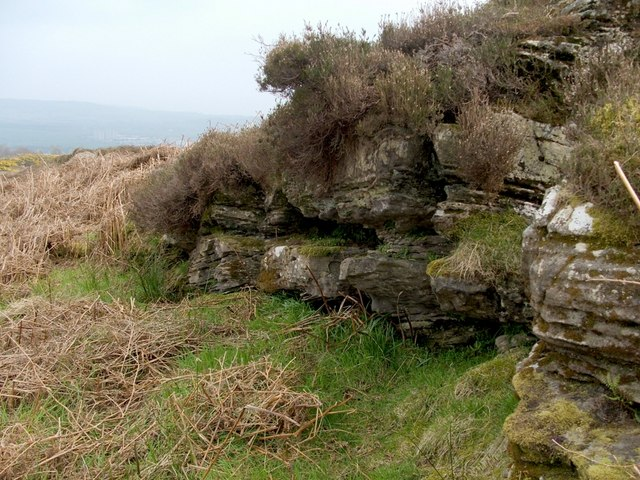 Cornstone outcrop