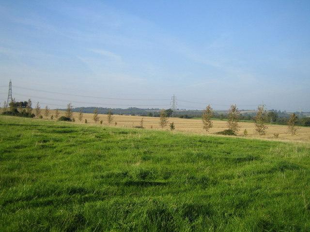 Farmland near Doddershall House