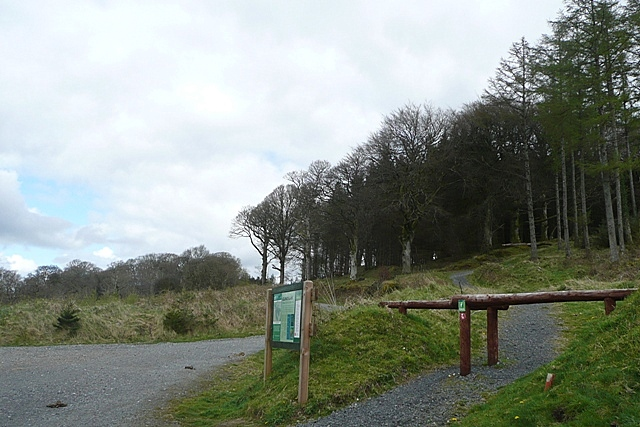 Slieve Bloom picnic area