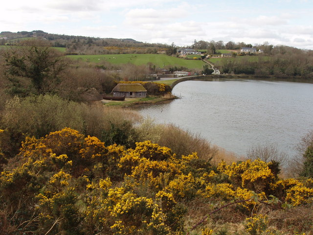 Irish National Heritage Park by the River Slaney